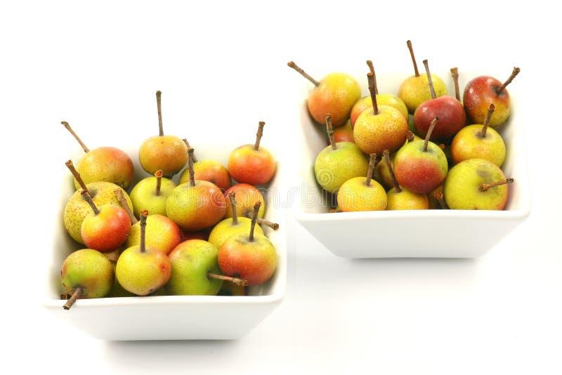 Vruchten van Malus Pumila (crabapple) stock fotografie