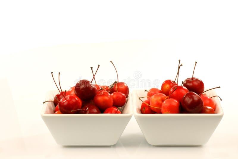 Vruchten van Malus Pumila (krabappel) royalty-vrije stock foto's