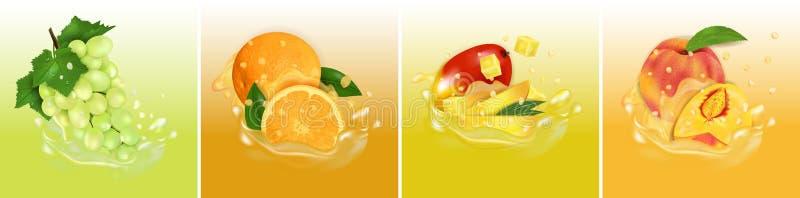 Vruchtensapplons Vastgestelde verse Mango, Sinaasappel, Perzik en Druiven 3d realistische vectorillustratie r royalty-vrije illustratie
