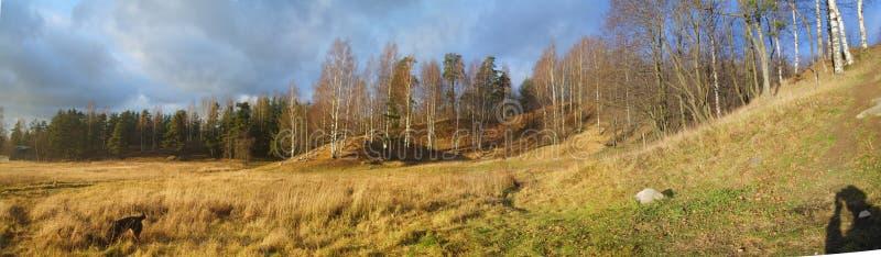 Vsevolozhsk, montanha de Rumbolovvskaya imagem de stock