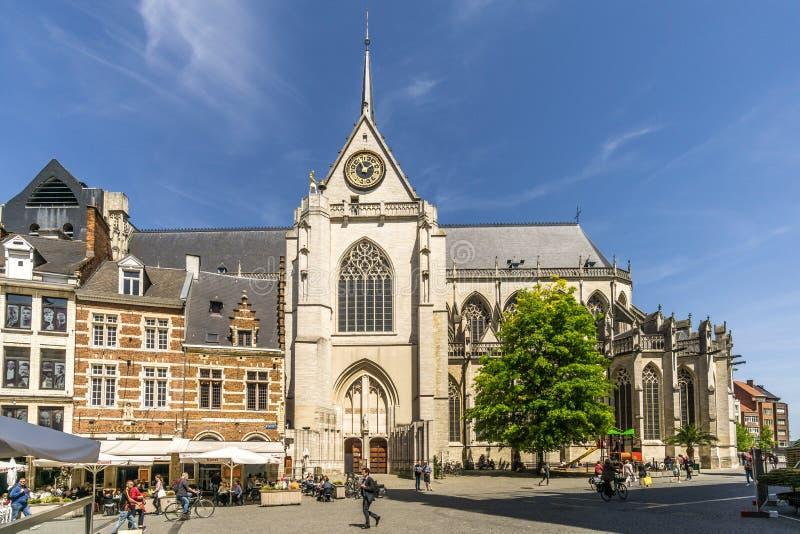 Vue à l'église de St Peter à Louvain - en Belgique image libre de droits