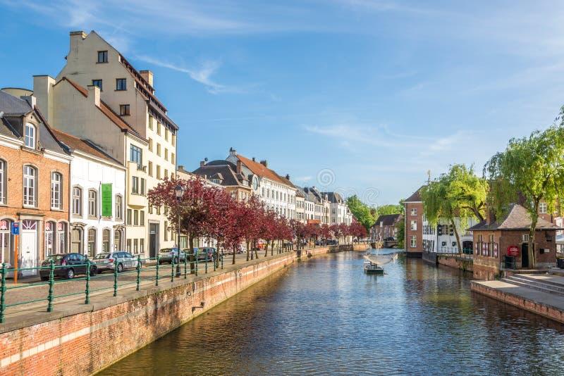 Vue à la banque de la rivière Nete Lier - en Belgique image libre de droits