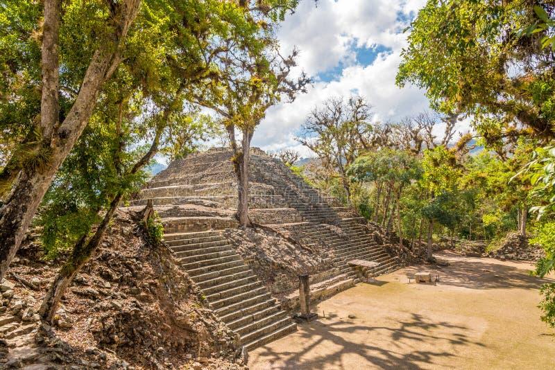 Vue ? la cour occidentale du site d'arch?ologie de Copan au Honduras photo libre de droits