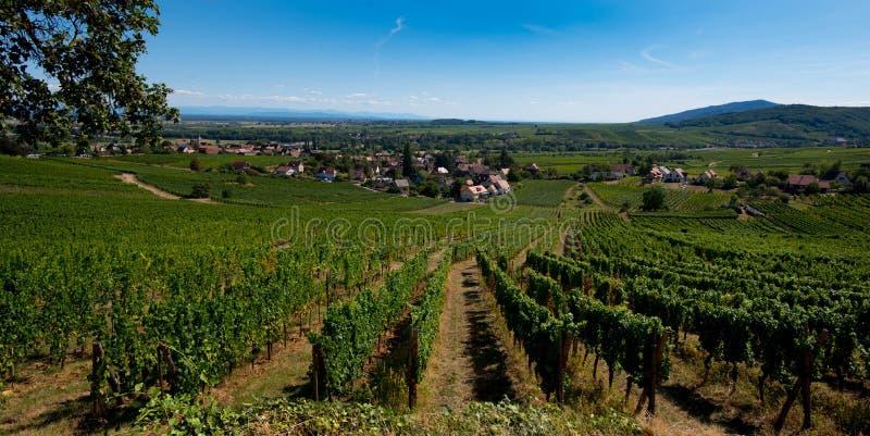 Vue à Mittelbergheim en Alsace images libres de droits