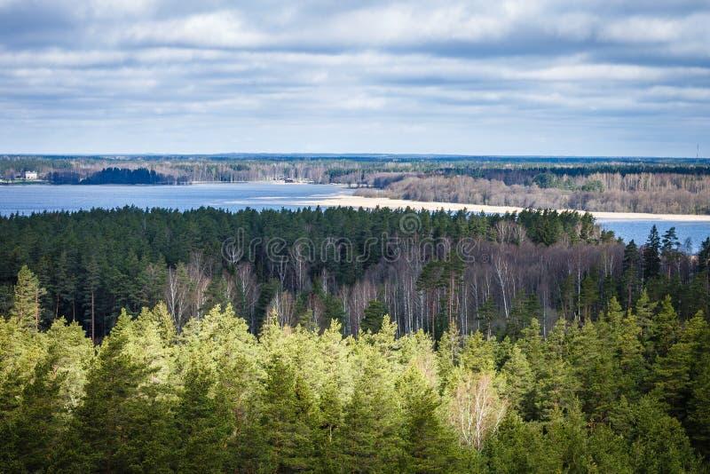 Vue à partir de dessus vers la forêt et le lac images stock