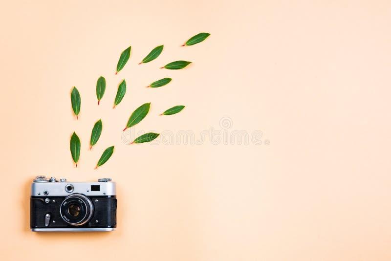 Vue étendue plate de vieille caméra photo libre de droits