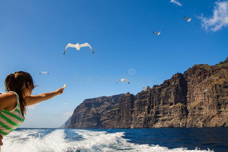 Vue étonnante de hautes falaises du bateau Tenerife, Îles Canaries image libre de droits