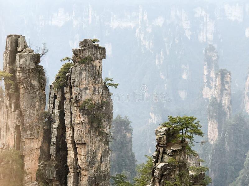 Vue étonnante de ressortissant Forest Park de Zhangjiajie image stock