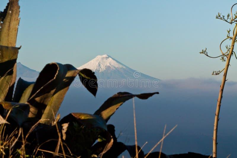 Vue étonnante de volcan du Cotopaxi, Equateur photos stock