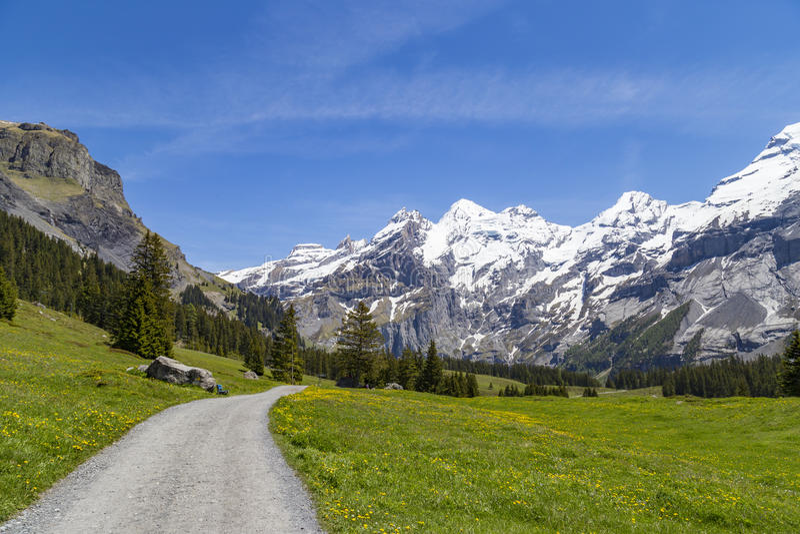 Vue étonnante des Alpes et des prés suisses près d'Oeschinensee (lac Oeschinen), sur Bernese Oberland, la Suisse image libre de droits