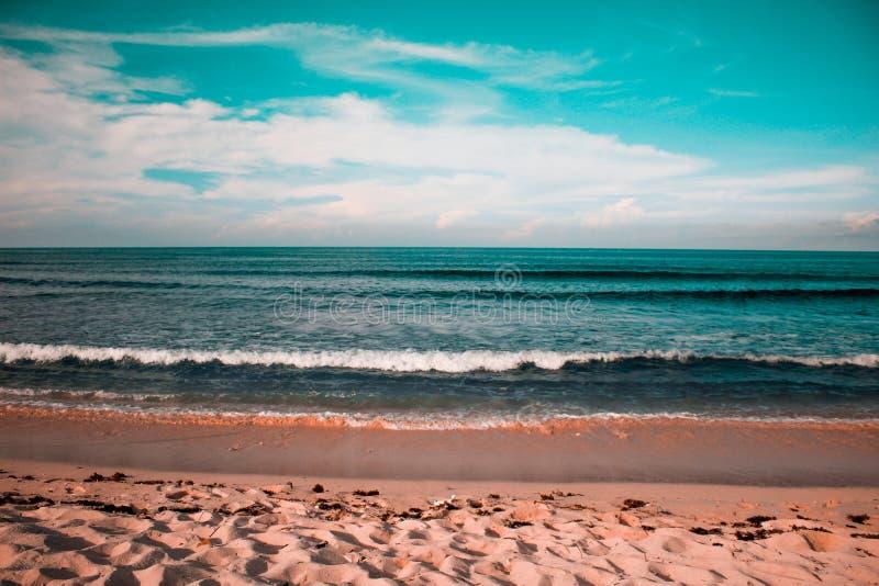 Vue étonnante des vagues dans Cali image libre de droits