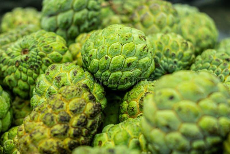 Vue étroite des plusieurs fruit de Pinhia Fruit frais du nord-est du Brésil vert sur l'extérieur et blanc sur l'intérieur photo libre de droits