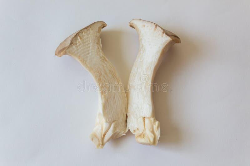 Vue étroite du Roi Trumpet Mushroom d'eryngii de Pleurotus indiquant la texture intérieure photos stock