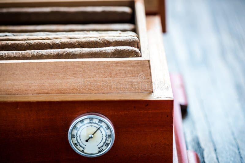 Vue étroite sur l'humidificateur en bois de cèdre avec des cigares photo libre de droits