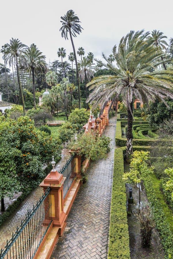 Vue aérienne d'une pièce les jardins de l'alcazar en Séville images stock