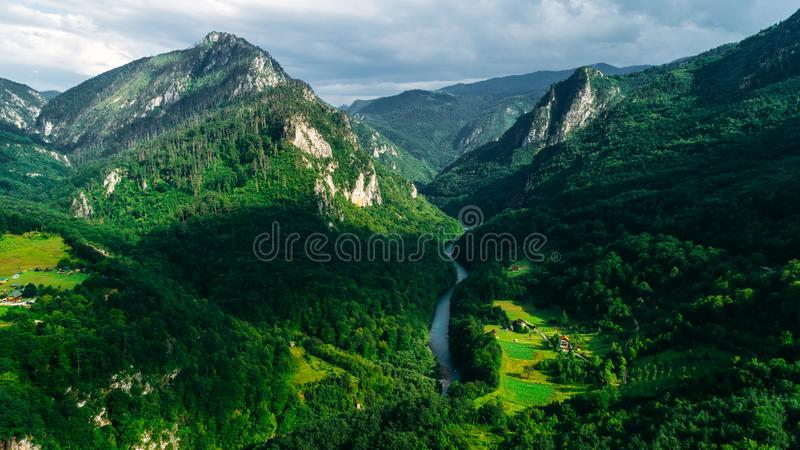 Vue aérienne d'une vallée de montagne, forêt, canyon de rivière Tara en parc national de Durmitor, Monténégro photographie stock libre de droits