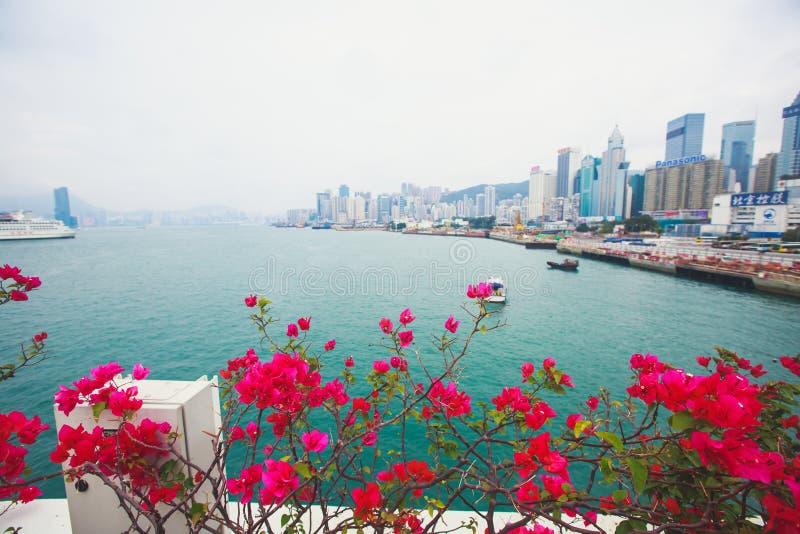 Vue aérienne de bel été grand-angulaire superbe de l'horizon d'île de Hong Kong, port de Victoria Bay, avec des gratte-ciel, ciel photos stock