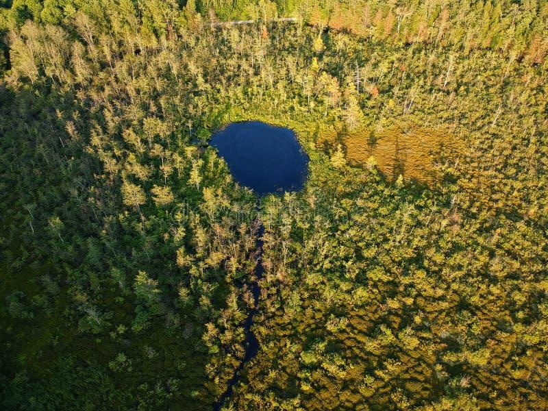Vue aérienne de bourdon d'étang dans une région sauvage boisée à New York hors de la ville photo stock