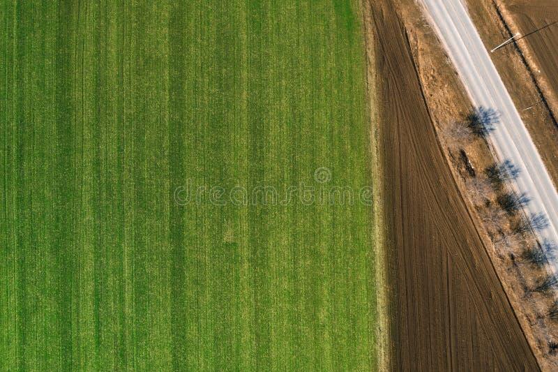 Vue aérienne de champ de culture de céréale du bourdon POV photo stock