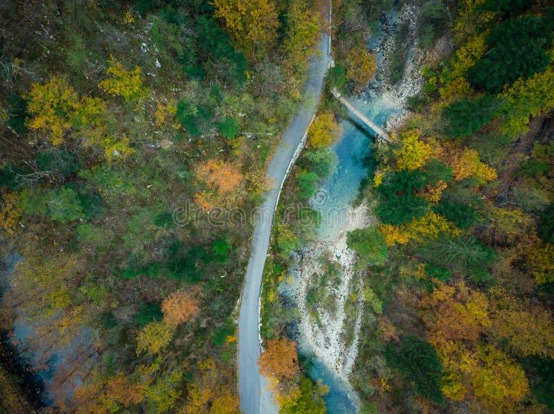 Vue aérienne de Divje JEzero ou lac sauvage dans la forêt épaisse de la Slovénie photo stock