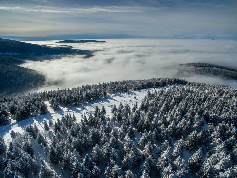 Vue aérienne de forêt d'hiver images stock