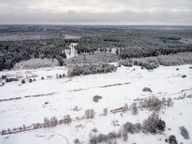 Vue aérienne de forêt d'hiver de bourdon photos stock