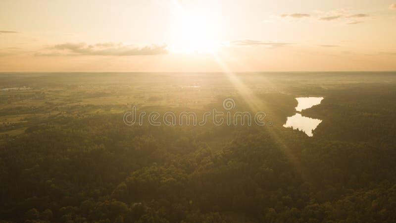 Vue aérienne de forêt pendant le coucher du soleil d'été image stock
