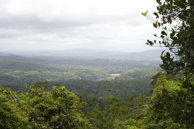 Vue aérienne de forêt tropicale tropicale, Australie images stock