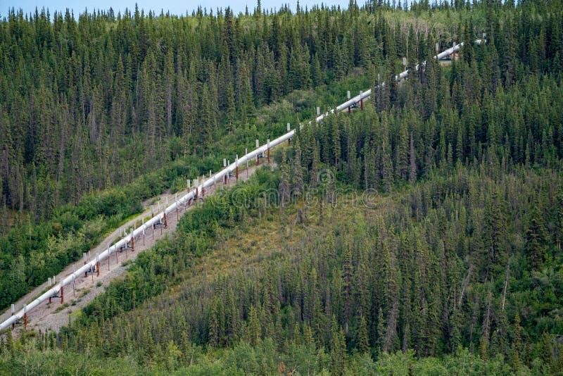 Vue aérienne de la canalisation de transport Alaska du secteur central de cuivre La forêt boréale entoure la canalisation images stock