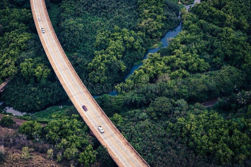 Vue aérienne de la route dans la forêt verte luxuriante, Kauai, Hawaï photographie stock libre de droits