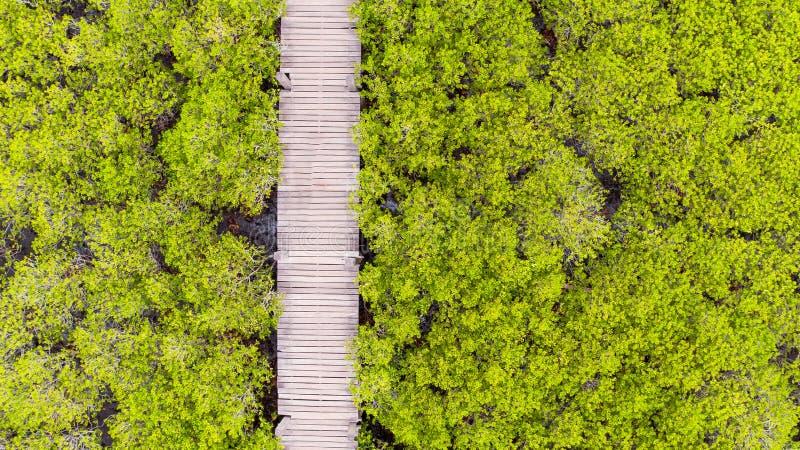 Vue aérienne de lanière de fourche de Thung, Rayong, Thaïlande photos stock