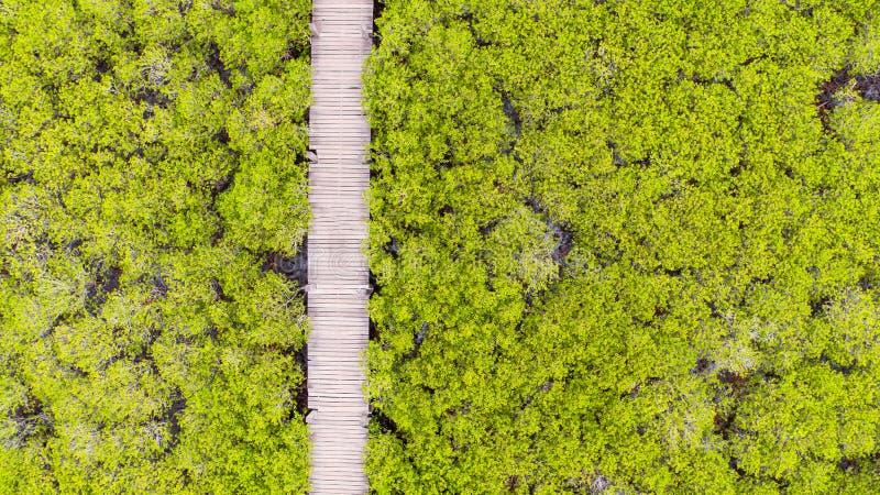 Vue aérienne de lanière de fourche de Thung, Rayong, Thaïlande images libres de droits