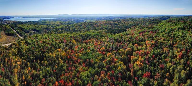 Vue aérienne de panorama de forêt de chute photographie stock