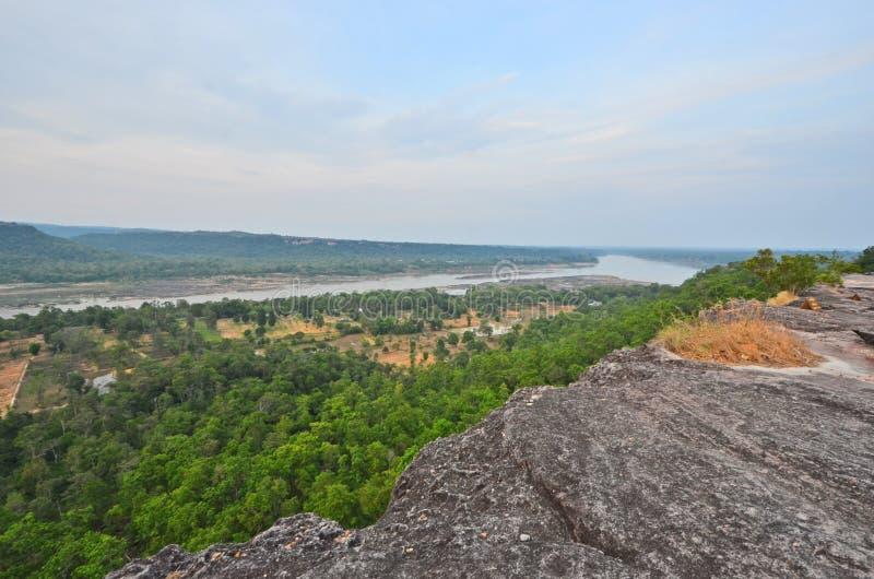 Vue aérienne de patio et de forêt verte avec la longue rivière photographie stock libre de droits