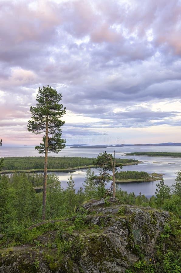 Vue a?rienne de paysage color? de coucher du soleil sur la c?te de la Mer du Nord Pin kar?lien sur les roches sur le rivage de la photo libre de droits