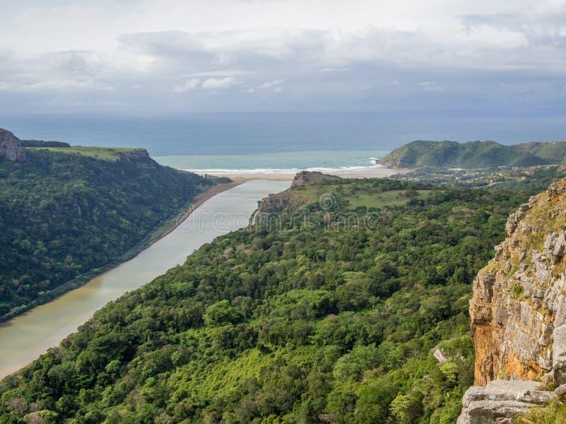 Vue aérienne de rivière brune entourée par la forêt coulant dans l'océan à la côte sauvage du ` s de l'Afrique du Sud photographie stock