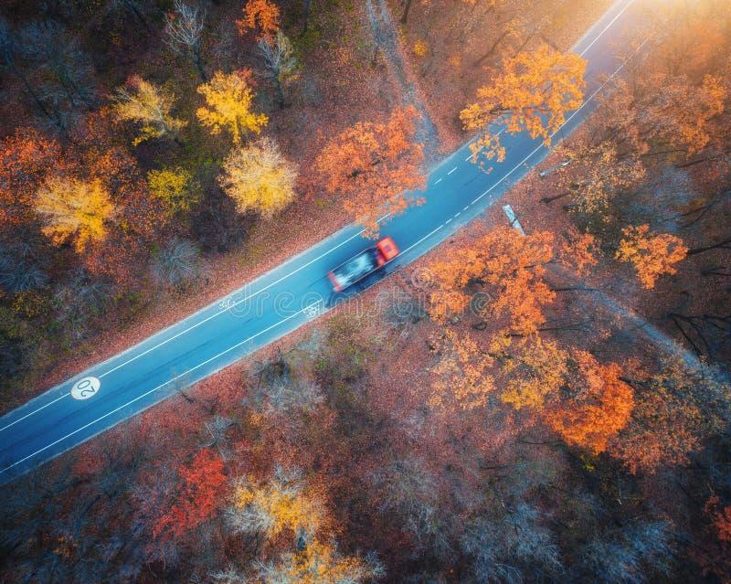 Vue aérienne de route avec la voiture brouillée dans la forêt d'automne au coucher du soleil image stock