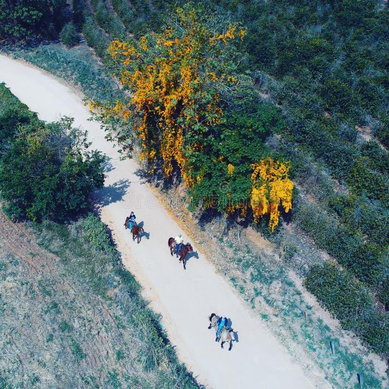 Vue aérienne de route dans la campagne, la ferme, le domaine, l'agriculture et la scène rurale photo stock