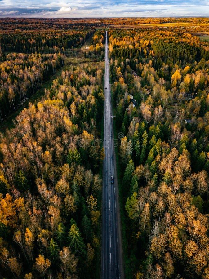 Vue aérienne de route dans le paysage d'automne de forêt d'automne avec les arbres de route, rouges et jaunes photos libres de droits