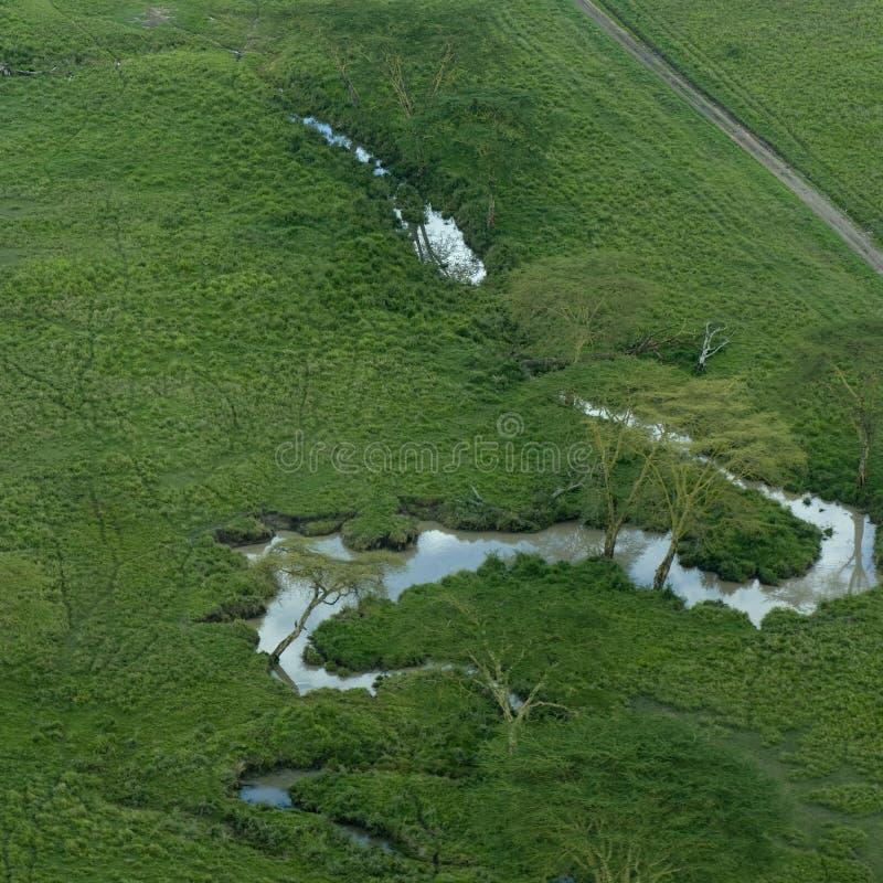 vue aérienne de serengeti de fleuve images stock