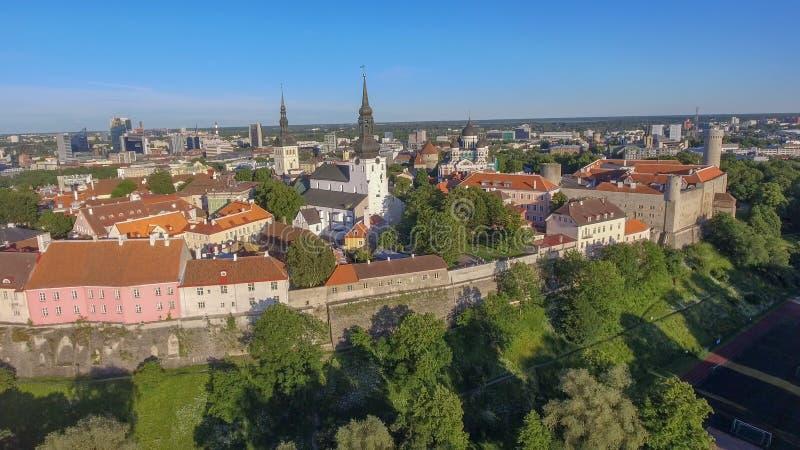Vue aérienne de Tallinn, Estonie dans la saison d'été images stock