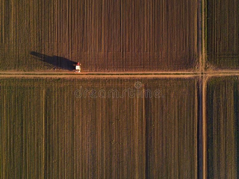 Vue aérienne de tracteur dans le domaine cultivé de culture de maïs de maïs photo stock