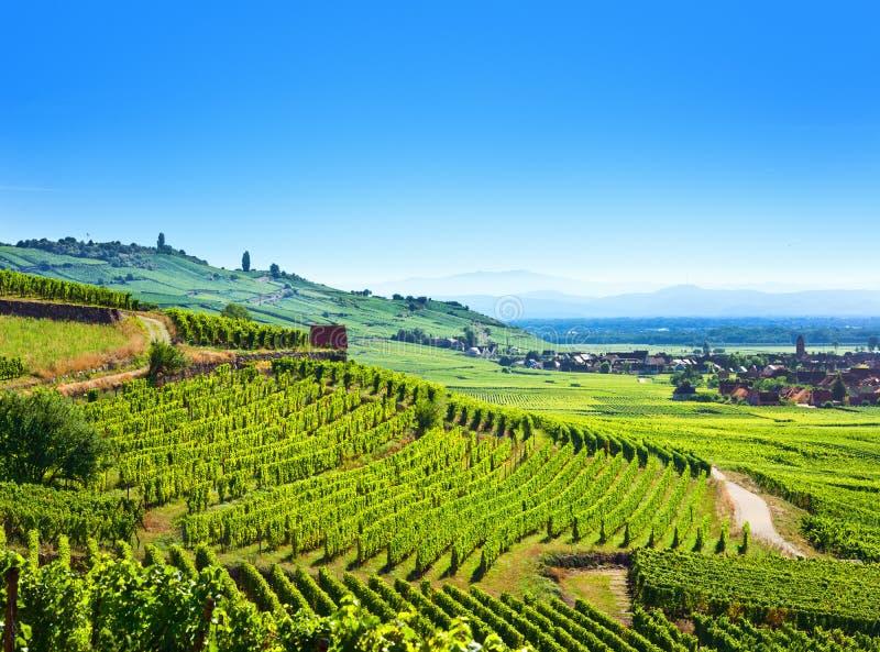 Vue aérienne de vallée de fruit d'Alsace chez Kaysersberg image stock