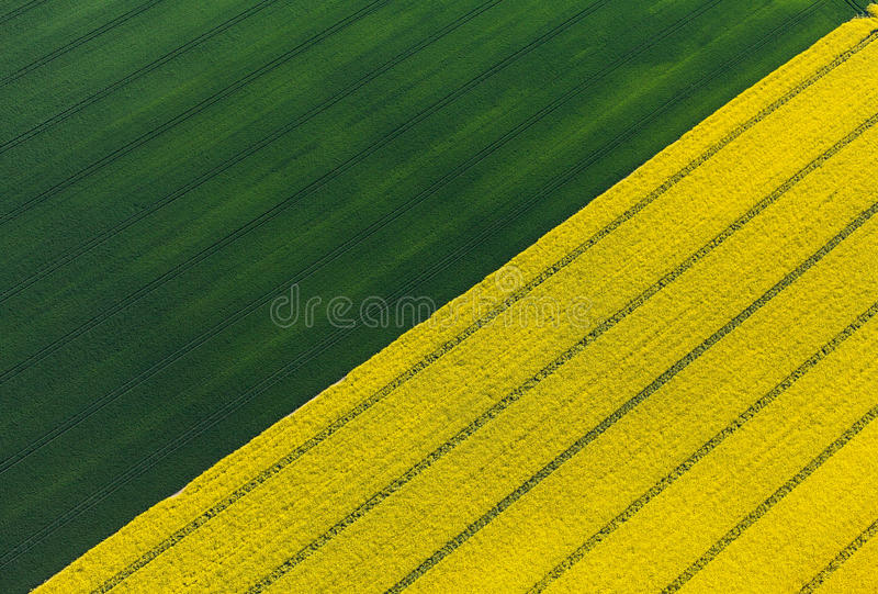 Vue aérienne des champs de récolte images libres de droits
