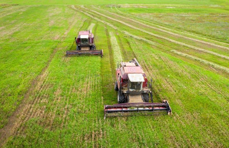 Vue aérienne des moissonneuses de cartel sur le champ agricole Temps de moisson Moissonneuse sur le champ vert d'agriculture image libre de droits