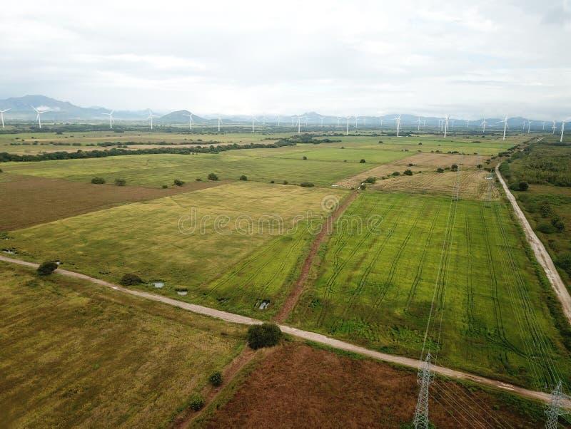 Vue aérienne des turbines de vent dans la plantation de gisements de riz au CEN image libre de droits