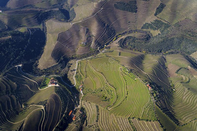 Vue aérienne des vignobles en terrasse dans la vallée de Douro près du village de Pinhao, Portugal photo libre de droits
