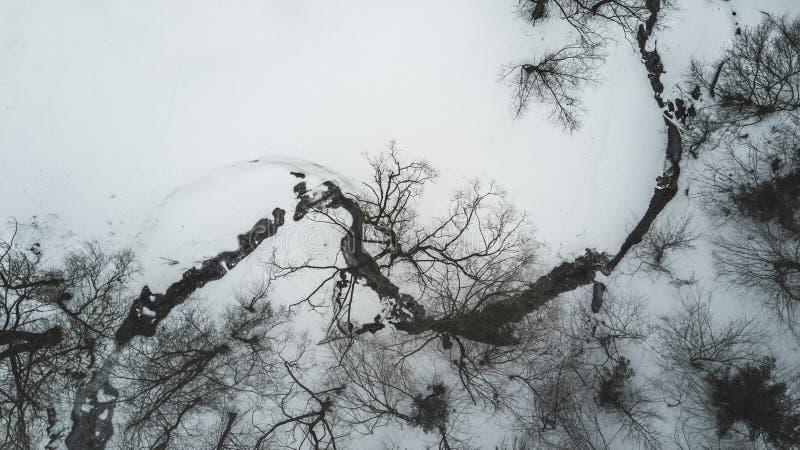 Vue aérienne directement vers le bas de crique congelée dans la forêt image stock