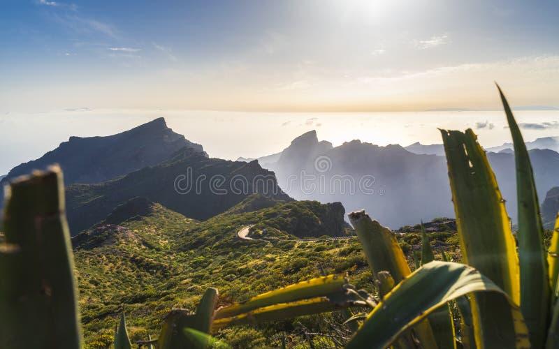 Vue aérienne panoramique au-dessus de village de Masca, l'attraction touristique la plus visitée de Ténérife images libres de droits