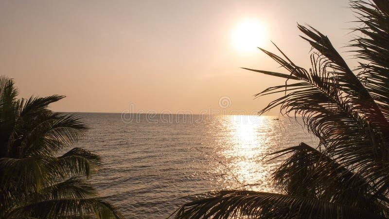 Vue aérienne pour le beau coucher du soleil avec des paumes, contexte de voyage dans Phu Quoc islan photographie stock